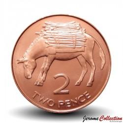 SAINTE-HÉLÈNE ET ASCENSION - PIECE de 2 Cents - Ane - 2006