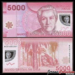 CHILI - BILLET de 5000 Pesos - Polymer - Hibou - 2013 P163d