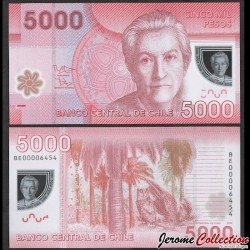 CHILI - BILLET de 5000 Pesos - Polymer - Hibou - 2012 P163c