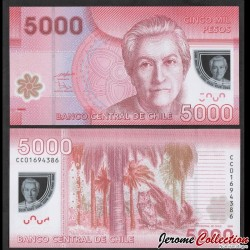 CHILI - BILLET de 5000 Pesos - Polymer - Hibou - 2009 P163a