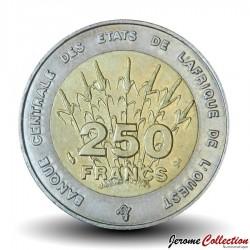 ETATS DE L'AFRIQUE DE L'OUEST - PIECE de 250 FRANCS - 1996 - BCEAO Km#13