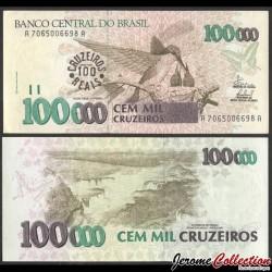 BRESIL - Billet de 100 Cruzeiros Reais - Colibri / Chutes d'Iguazú - 1993 P238a
