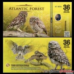 ATLANTIC FOREST - Billet de 36 Aves - Chouette chevêche - 2017 0036 AVES