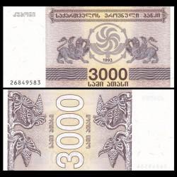 GEORGIE - Billet de 3000 Kuponi - Griffon - 1993 P45a