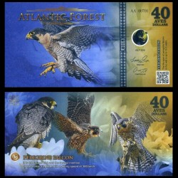 ATLANTIC FOREST - Billet de 40 Aves - Faucon pèlerin - 2018